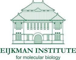 Eijkman Institute for Molecular Biology, Jakarta