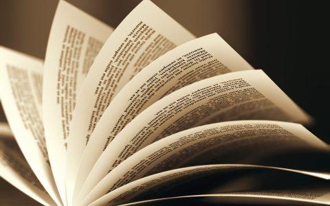 Recent Publications (2020)